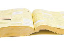 Yellow Pages or a Business Website