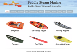 Paddlesteam